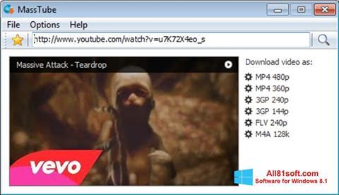 Στιγμιότυπο οθόνης MassTube Windows 8.1