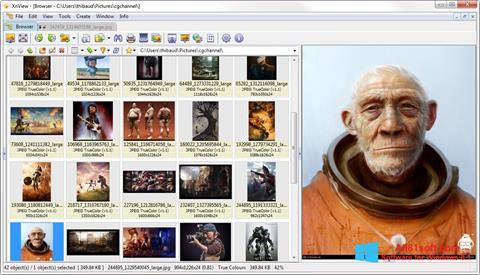 Στιγμιότυπο οθόνης XnView Windows 8.1