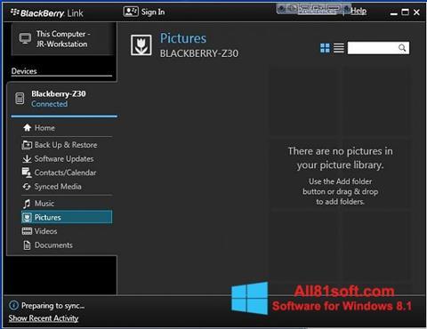 Στιγμιότυπο οθόνης BlackBerry Link Windows 8.1