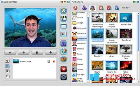 Στιγμιότυπο οθόνης WebcamMax Windows 8.1