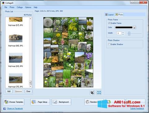 Στιγμιότυπο οθόνης CollageIt Windows 8.1