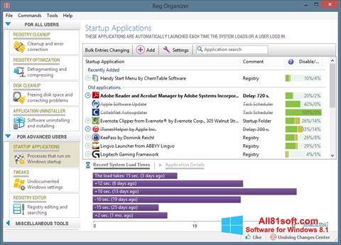 Στιγμιότυπο οθόνης Reg Organizer Windows 8.1