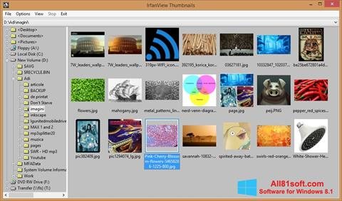 Στιγμιότυπο οθόνης IrfanView Windows 8.1