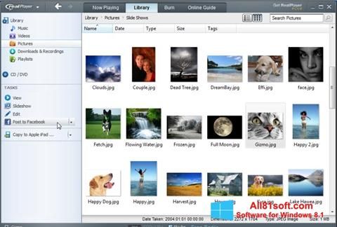Στιγμιότυπο οθόνης RealPlayer Windows 8.1